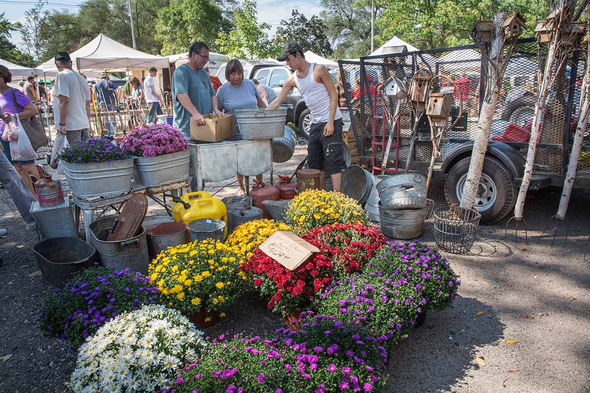 Princeton Flea Market— Antiquing on a whole new level